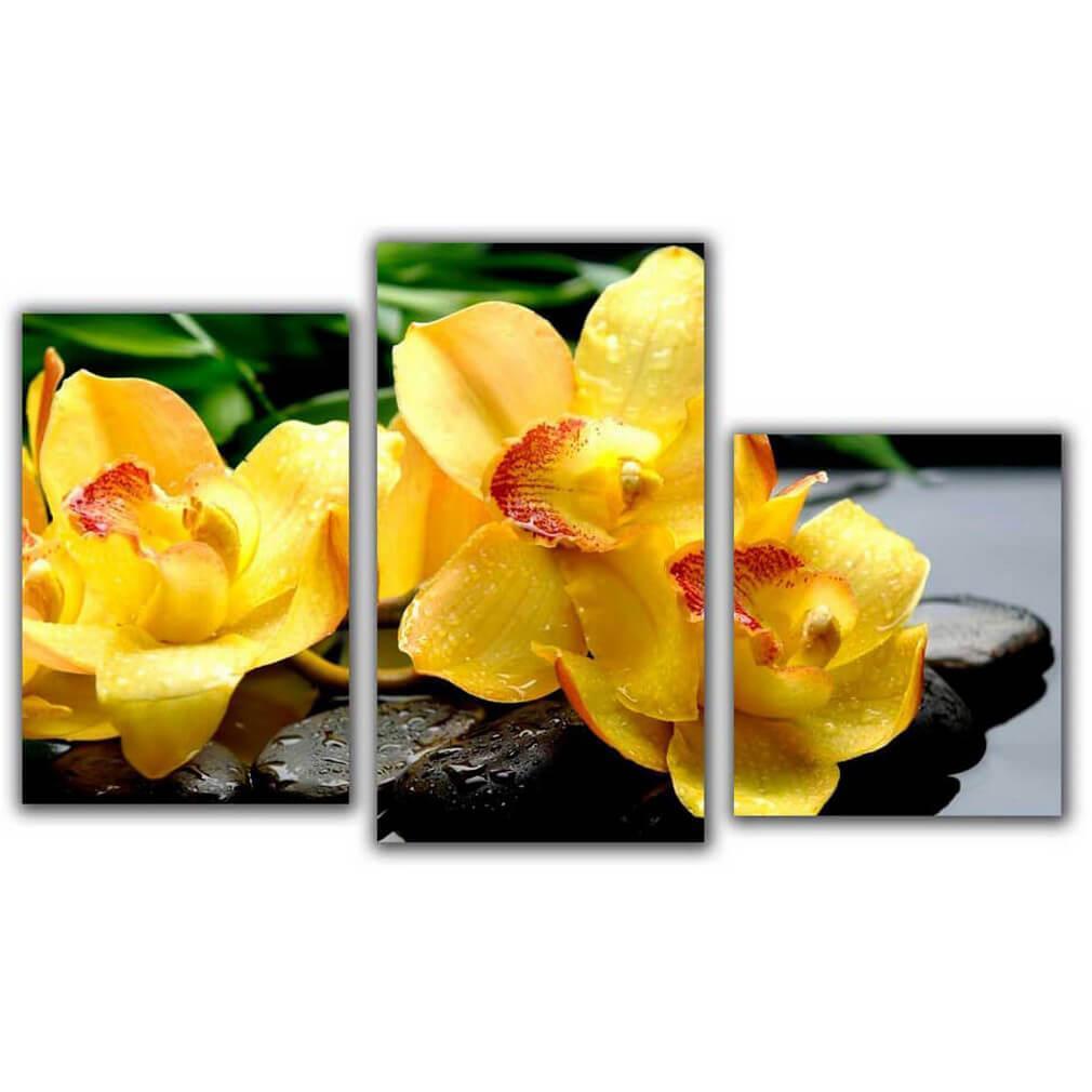 Мини модульная картина Желтый пестик Toplight 55х94см TL-MM1040